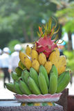 Tropical and fresh fruits on plate in the garden. Tropical and fresh fruits on the big plate in the garden Royalty Free Stock Photography