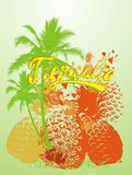 Tropical fruit. Consisting of a variety of tropical fruit-themed print graphic design royalty free illustration