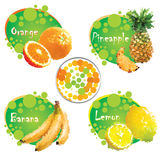 Tropical fruit. Set of tropical fruit juices Stock Image