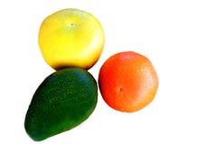 Tropical fruit. Including grape, orange and avocado Stock Image