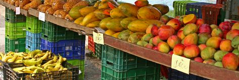 Tropical fruit. Colorful tropical for sale in an outdoor market of Costa Rica Royalty Free Stock Image
