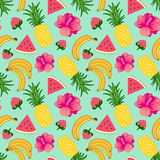 Tropical fruit background Royalty Free Stock Photo