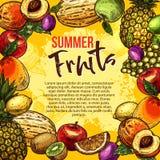 Tropical fruit sketch poster of summer berry frame. Tropical fruit and berry frame for summer drink menu poster. Fresh apple, orange and grapefruit, mango royalty free illustration