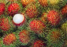 Tropical fruit ,close up rambutan and one peeled Royalty Free Stock Images