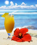 Tropical fruit cocktail on the beach Royalty Free Stock Photo