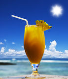 Tropical fruit cocktail on the beach Royalty Free Stock Photos