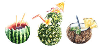 Tropical fruit cocktail pineapple, coconut and watermelon. Set of watercolor botanical illustration Pineapple cocktail, coconut, watermelon Stock Photos