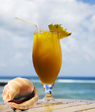 Tropical fruit cocktail and sea shell Royalty Free Stock Photography