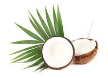 Tropical fruit coconut. Fresh coconut with leaves isolated on white background royalty free stock photos