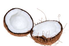 Coconuts isolated on the white background. The tropical fruit coconuts isolated on the white background Stock Photography