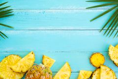 Tropical fruit composition. royalty free stock images