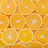 Tropical fruit cut circles as background Royalty Free Stock Photo