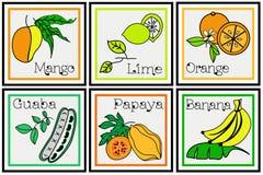 Tropical Fruit Descriptive Set Stock Image