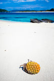 Tropical fruit on the deserted white beach Royalty Free Stock Image