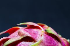 Tropical fruit Dragonfruit pink and green skin on black background. Royalty Free Stock Photos