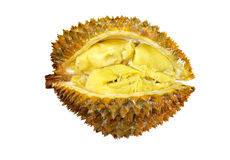 Durian. Smelly  fruit durian isolated Stock Photo