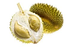 Tropical fruit - Durian. Isolated on white background Stock Images