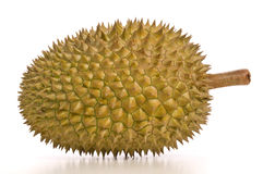 Tropical fruit - Durian Royalty Free Stock Photos
