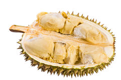 Tropical fruit - Durian Stock Images