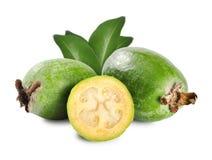 Tropical fruit feijoa Royalty Free Stock Photos