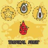 Tropical fruit flat concept icons Stock Photos