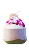 Tropical fruit green coconut with beautiful purple orchid flower Stock Photos