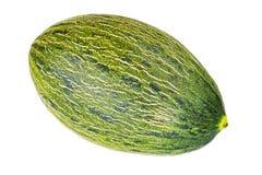 Tropical fruit, green melon. Stock Photo