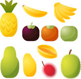 Tropical fruit icons. Assorted tropical fruit icons, chubby cube style Stock Image