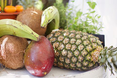 Tropical fruit. An image of many pieces of tropical fruit royalty free stock image