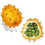Tropical fruit Kiwano isolated on white background Royalty Free Stock Image