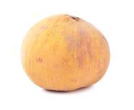 Tropical fruit - Kra-Thon Thai fruit Stock Images