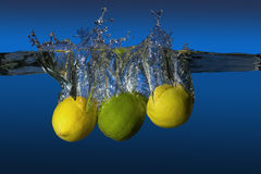 Tropical fruit limes and lemons Royalty Free Stock Photos