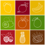 Tropical Fruit Linear Icons Stock Photo