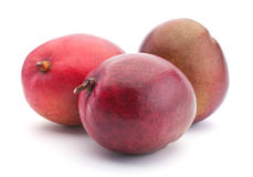 Tropical fruit mango Royalty Free Stock Images