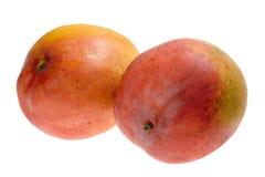 Tropical fruit - Mango Stock Photo