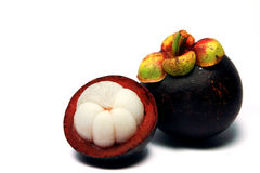 Tropical fruit mangosteen Stock Image