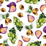 Tropical fruit pattern royalty free illustration