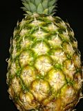 Tropical fruit pineapple in close-up royalty free stock photography