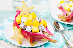Tropical fruit salad in pitahaya, mango, dragon fruit bowls with a glass of juice Stock Image