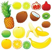 Tropical fruit set. Each in separated layer Royalty Free Stock Photography