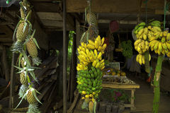 Tropical fruit shop. A little shop on the roads of the beautiful tropical island Sri Lanka in the Indian Oceans sells exotic fruits Stock Image