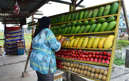 Tropical fruit stall. Malay lady arranging tropical fruits on wooden display rack Stock Photography