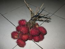 Tropical fruit sweet and fresh taste, widely spread and grown in Asia. Source of vitamins and health. stock images
