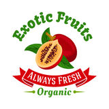 Tropical fruit symbol with exotic tamarillo Stock Photography