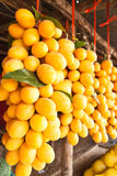 Tropical fruit in Thailand Stock Photography