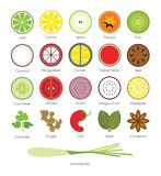 Tropical Fruit and Tropical Herb Icon Stock Images