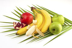 Tropical fruits. With palm leaf on white stock image