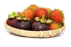 Tropical Fruits. Tropical Fruit-Rambutan and Mangosteen fruit Royalty Free Stock Images