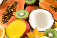 Tropical fruits royalty free stock photos