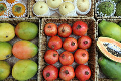 Tropical Fruits Royalty Free Stock Images